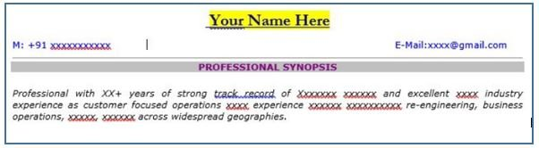 Structure of an effective resume - STEP I- Resume Header