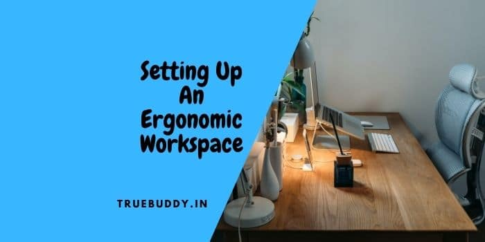 Setting up an Ergonomic Workplace – A Complete Guide